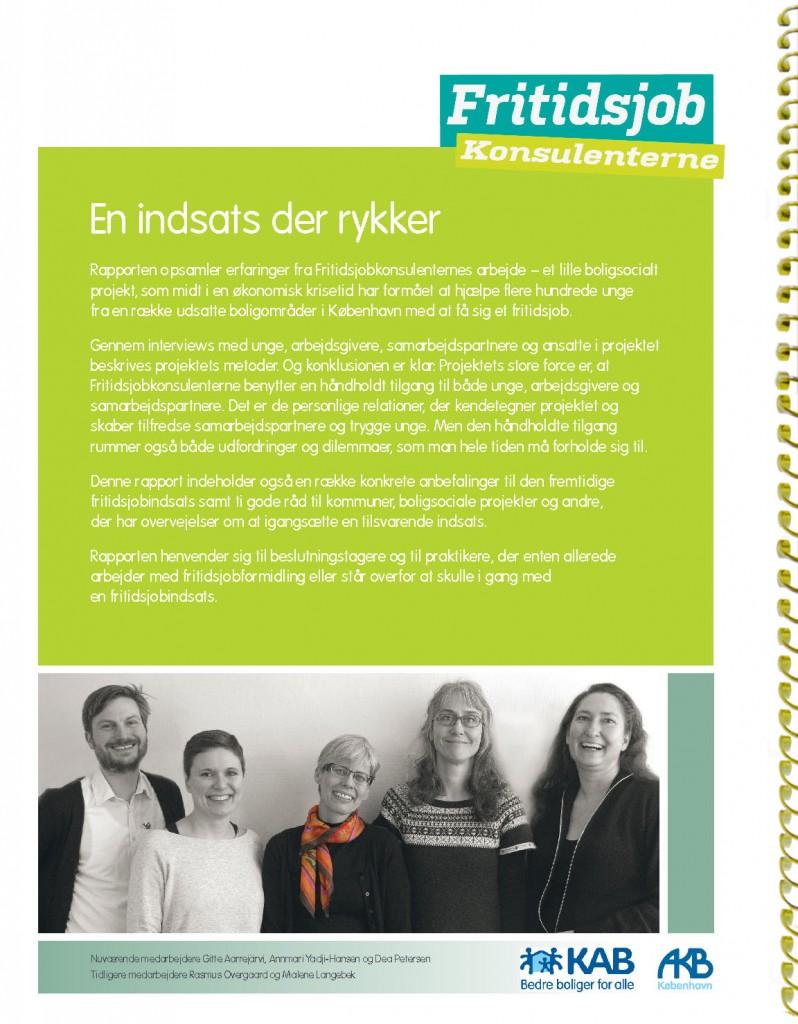 Rapport Fritidsjobkonsulenterne_Page_17