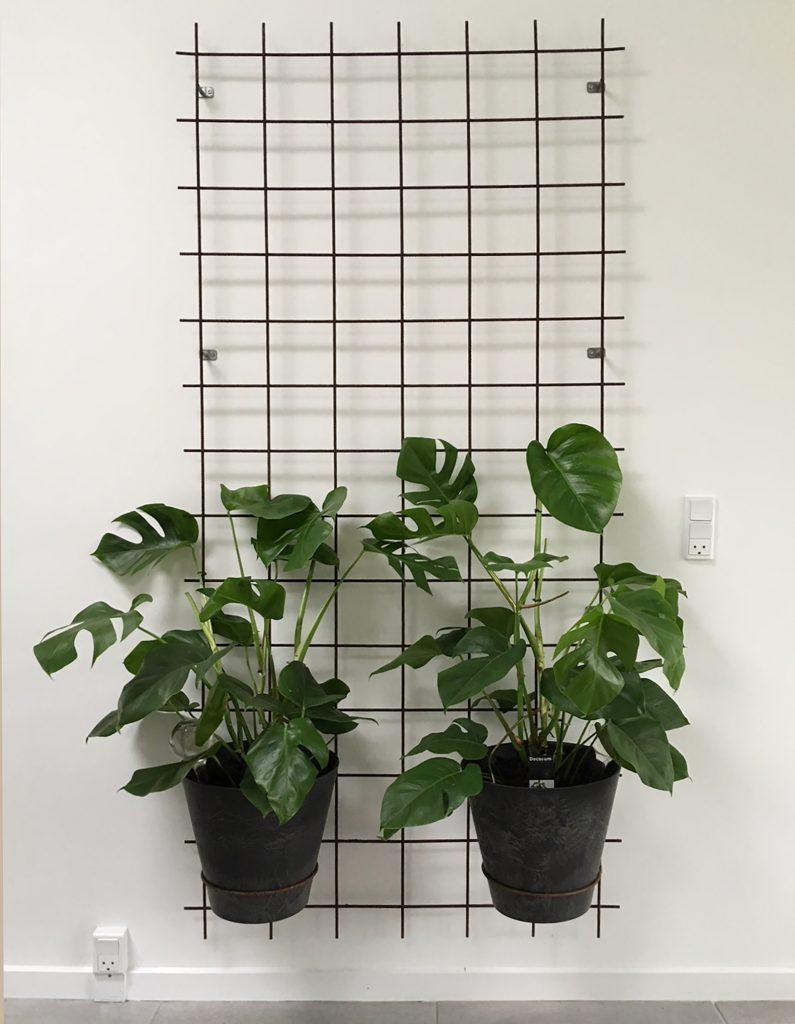 plantestativ